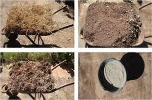 Composto orgânico: uso no cultivo de hortaliças