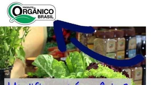 Conhece os produtos orgânicos?
