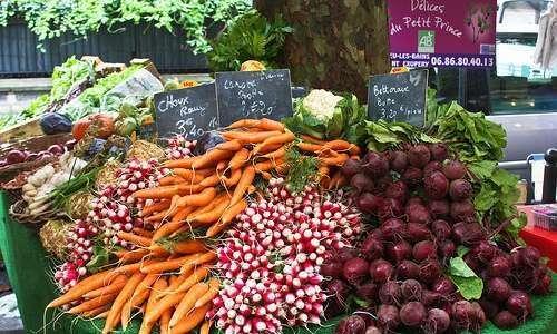 Catálogo brasileiro de hortaliças: 50 espécies mais consumidas
