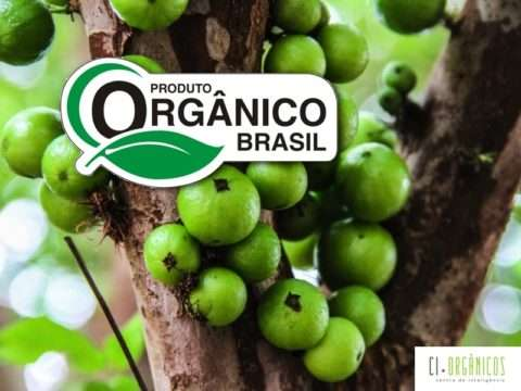 organico-selo, add.010