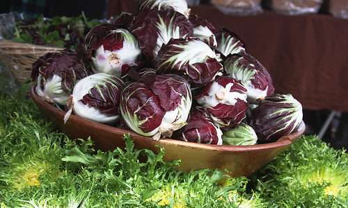 O processo de conversão de sistemas de produção de hortaliças convencionais para orgânicos
