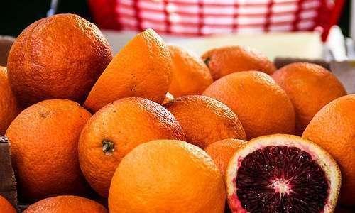 Laranja orgânica no Brasil: produção, mercado e tendências
