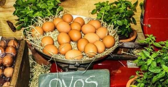 Estudo do sistema agroindustrial de produtos orgânicos no Estado de São Paulo