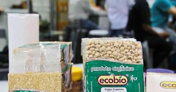 Manejo da adubação na cultura do feijão em sistema de produção orgânico