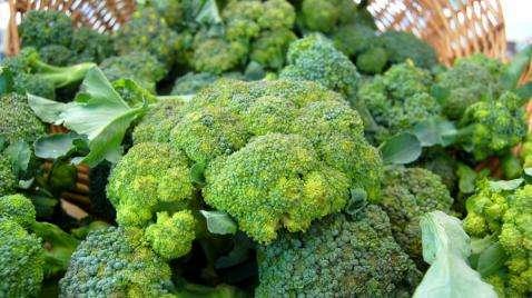Embalagens em brócolis (Brassica oleracea l. var. itálica) orgânicos minimamente processados