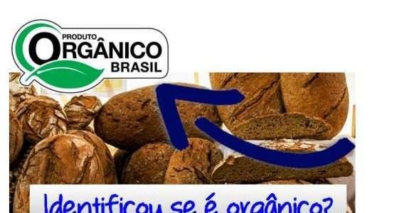Esclarecem consumidor como identificar produtos orgânicos