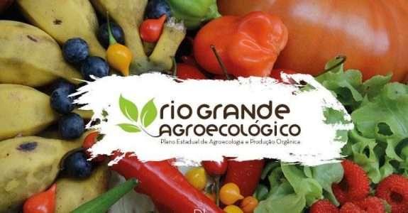 SNA: vê com cautela anúncio do Plano Safra da Agricultura Familiar