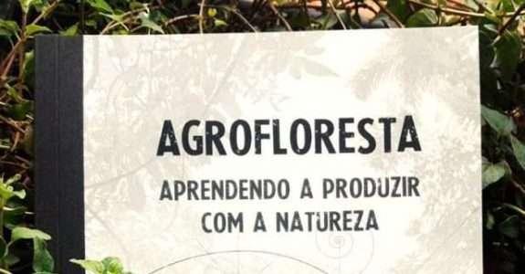 Agroflorestas: aprendendo a produzir