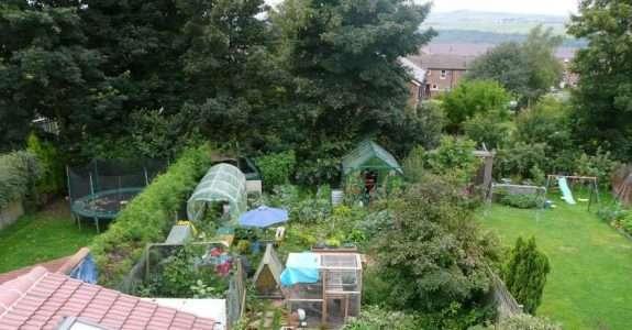 Agricultura orgânica em áreas urbanas e periurbanas com base na agroecologia