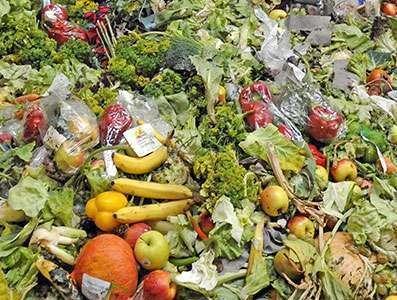 Infraestrutura precária e manuseio inadequado colaboram para desperdício de frutas e hortaliças