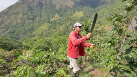 magem:Banco Mundial / Dominic Chavez