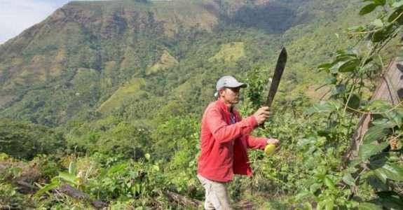 FAO cria certificação para produtos de regiões montanhosas