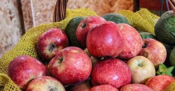 Mercado brasileiro de orgânicos precisa se diversificar, afirma especialista