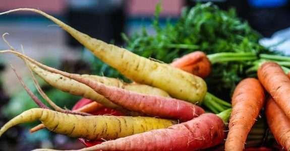 Mercado de orgânicos: produção de sementes é um dos gargalos do setor