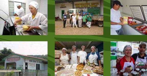 Agroindústria da agricultura familiar: regularização e acesso ao mercado
