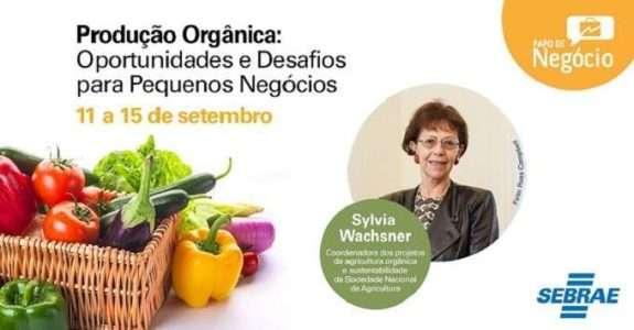 Evento 'Papo de Negócio' abordará a produção orgânica no país