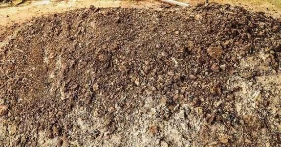 Processo de compostagem aproveitando sobras