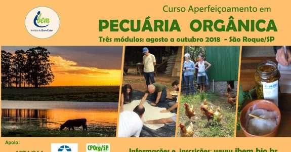 IBEM realiza curso sobre pecuária orgânica em SP