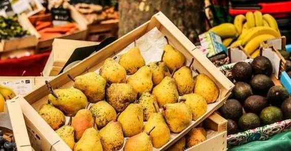 Frutas e vegetais estão entre os alimentos mais desperdiçados do mundo