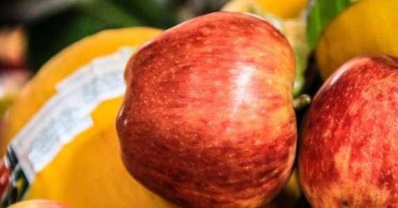 Saudável, orgânico e sustentável: a revolução dos millennials e a indústria alimentícia