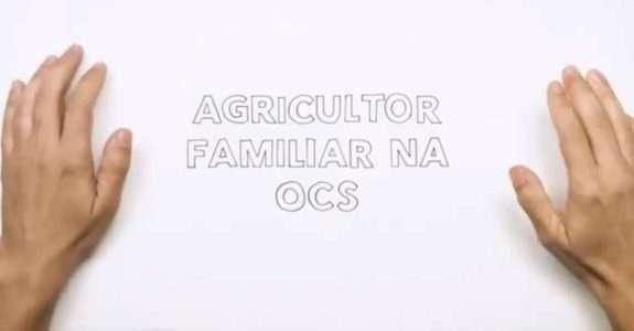 Agricultor familiar na OCS – venda direta ao consumidor