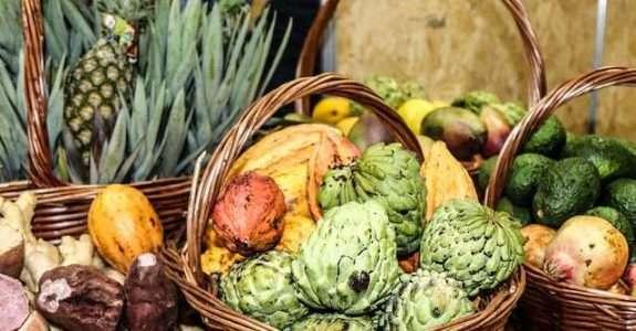 Alimentação saudável impulsiona investimento de grandes marcas no setor de orgânicos
