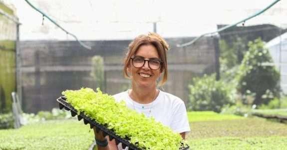 A agricultura orgânica que se reinventa