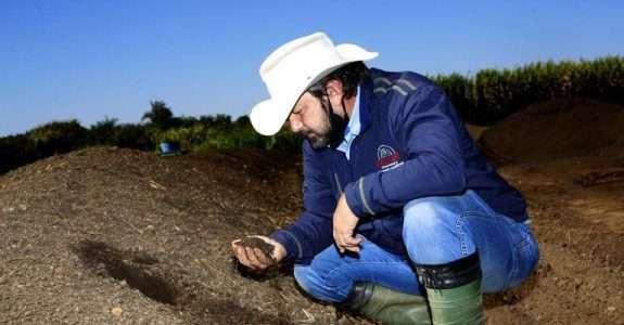 Bioinsumos são aliados da produtividade em culturas orgânicas