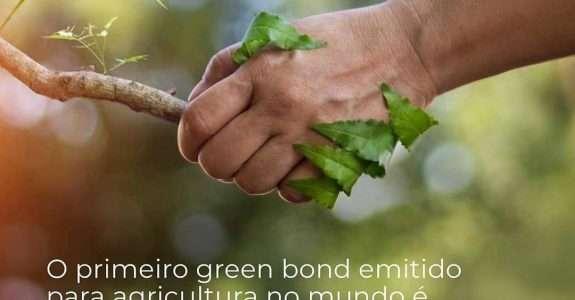 Rizoma e grupo Ecoagro realizam primeira emissão certificada de título verde do mundo